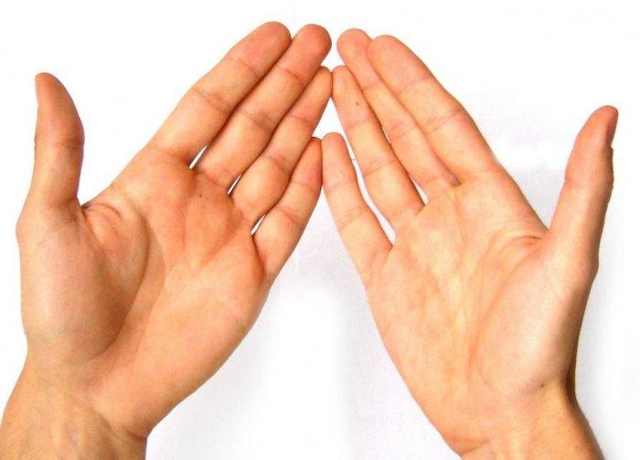 Интересные факты о руках человека