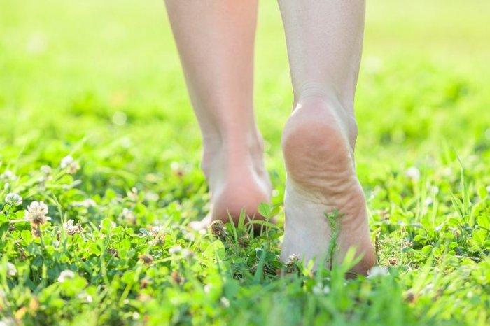 Интересные факты о ногах человека