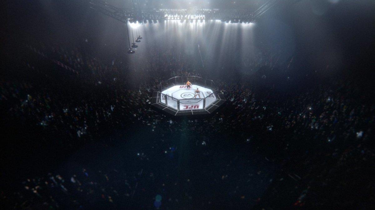 UFC фоны