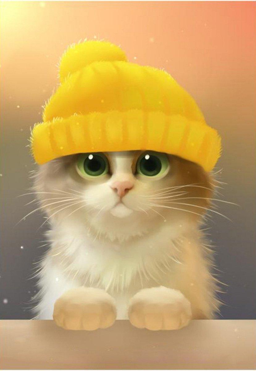 Кот в шапке арт