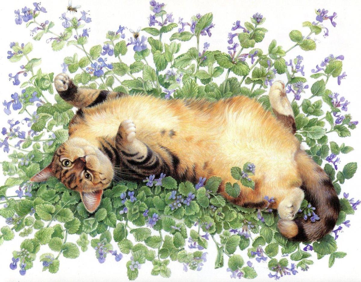 Кот лежит на спине арт