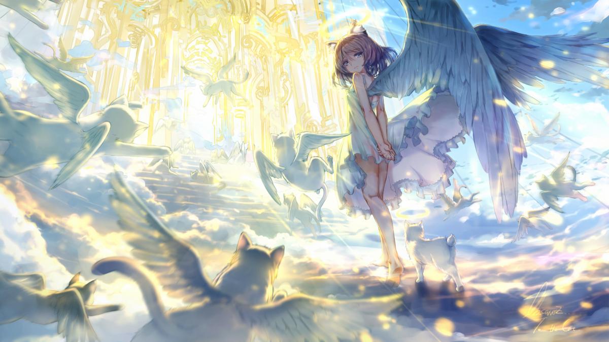 Фон рая аниме