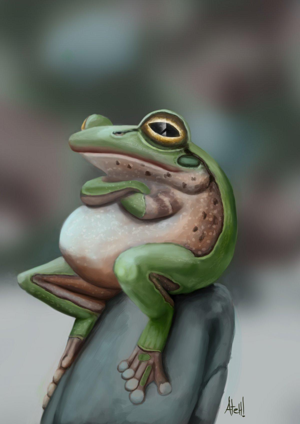 Эстетик арты с лягушками